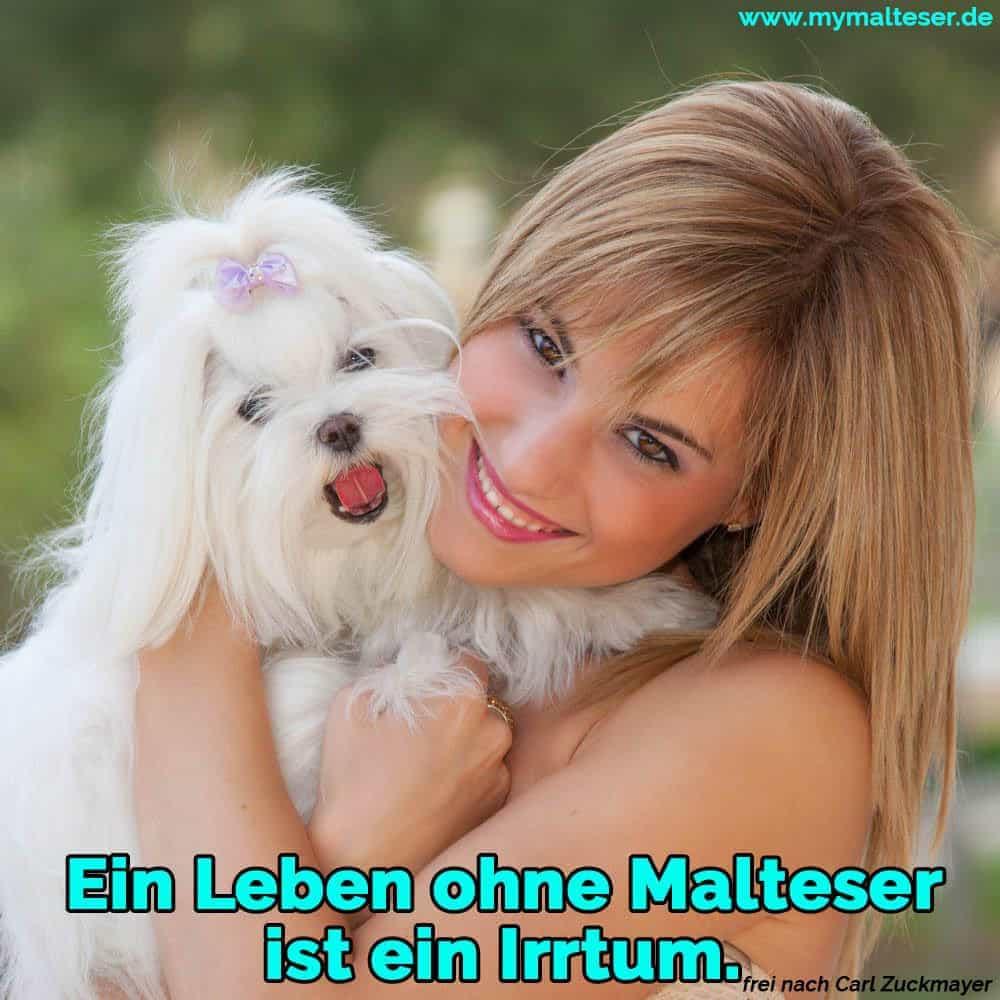Eine Frau umarmt ihren Malteser
